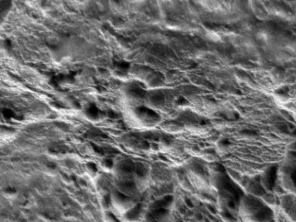 Plasma Surface Etching - A microscopic image of a ptfe surface after plasma treatment displaying its improved etched and consequently rougher surface
